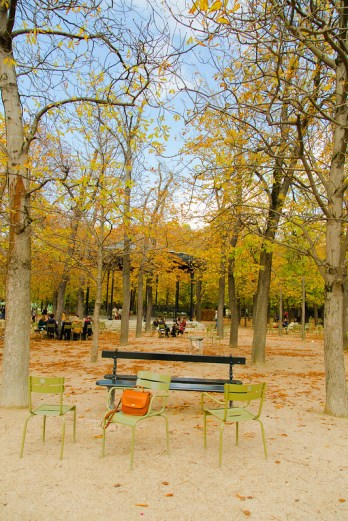 Fall at Jardin du Luxembourg