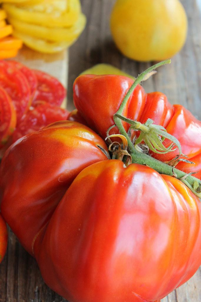 bruschetta tomate