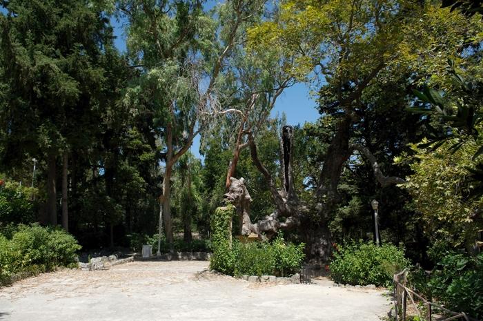 Rhodos_Rodini_Park_02