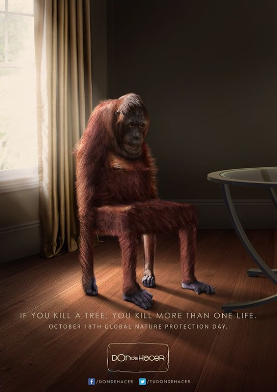 Don de Hacer - If you kill a tree, you kill more than one life Monkey