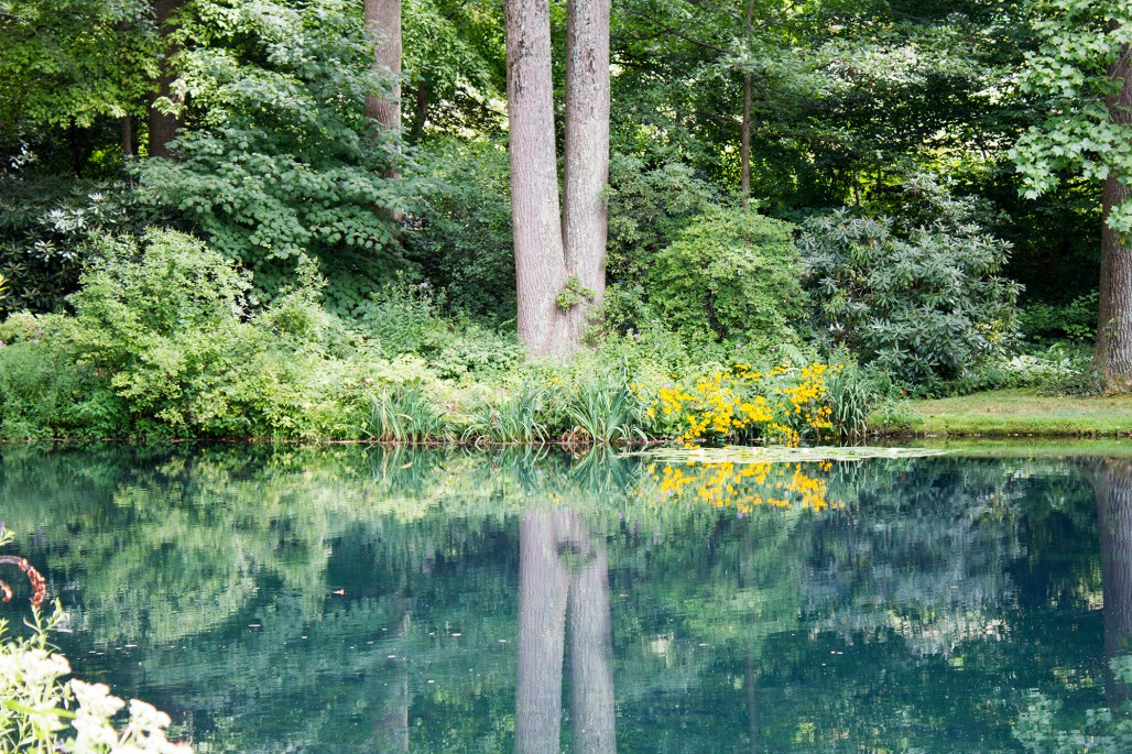mt-cuba-gardens-delaware-blue-pond