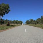 02 Viajefilos en Australia, Kakadu NP 122