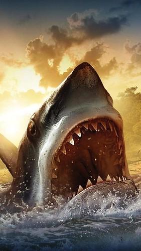 wallpaper-full-hd-1080-x-1920-smartphone-angry-shark