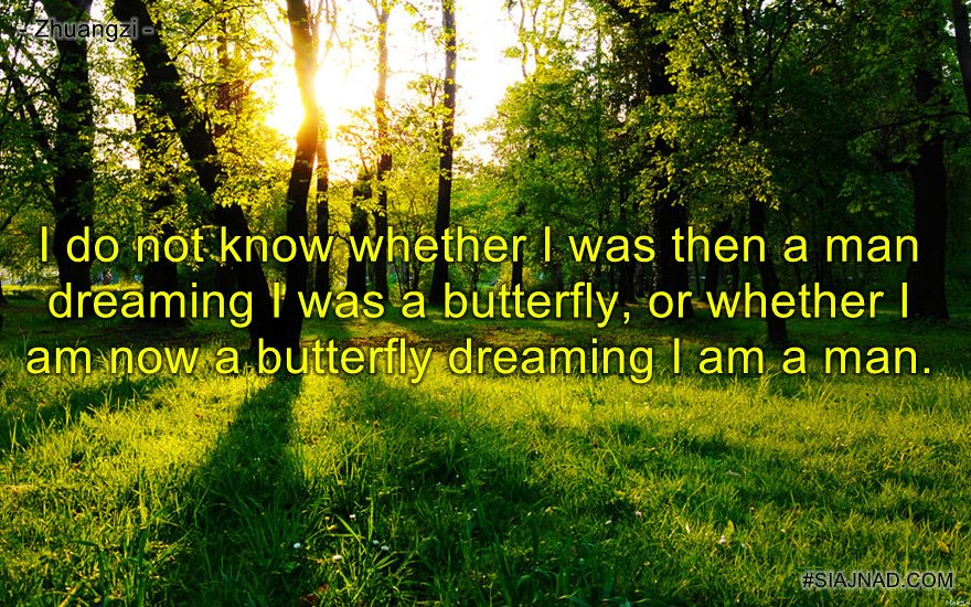 I do not know whether I was then a man dreaming I was a butterfly or whether I