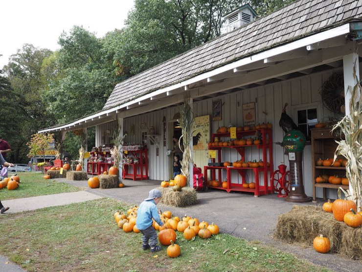 Exploring Minnesota's Orchards - Due Midwest