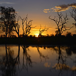 02 Viajefilos en Australia, Kakadu NP 117