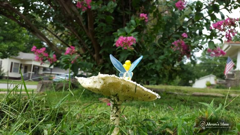 Mushroom Fairy 004