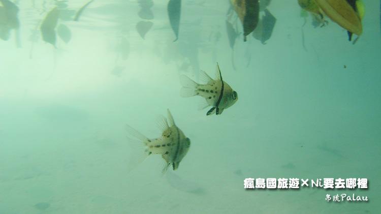 26百悅飯店沙灘水下