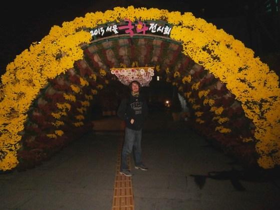 Seoul Chrysanthemum Exhibit