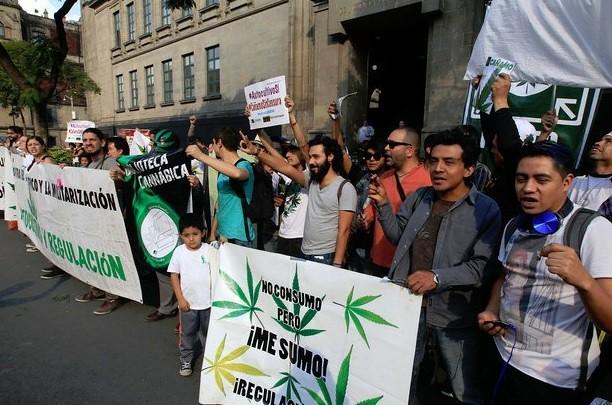 Mancera, a favor del uso medicinal de mariguana