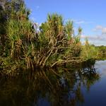 02 Viajefilos en Australia, Kakadu NP 089