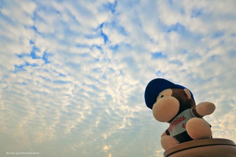 天空仰望(look the sky)