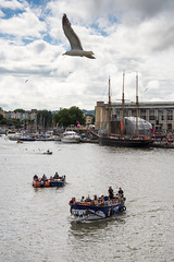 Seagull over #Bristol Harbour