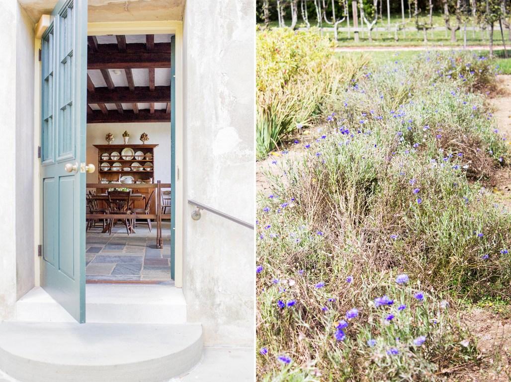 hagley-garden-food-tour-gazebo-blue-purple-flowers