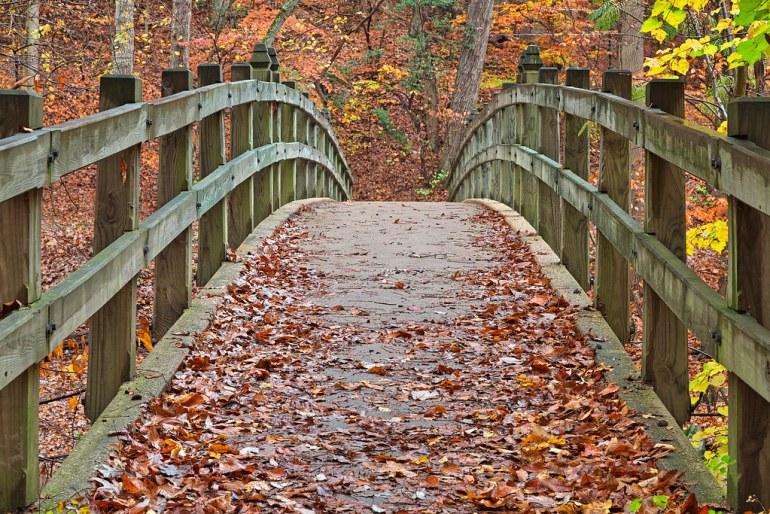 Bridge to Fall - HDR
