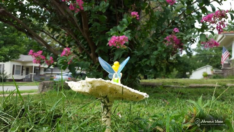 Mushroom Fairy 002