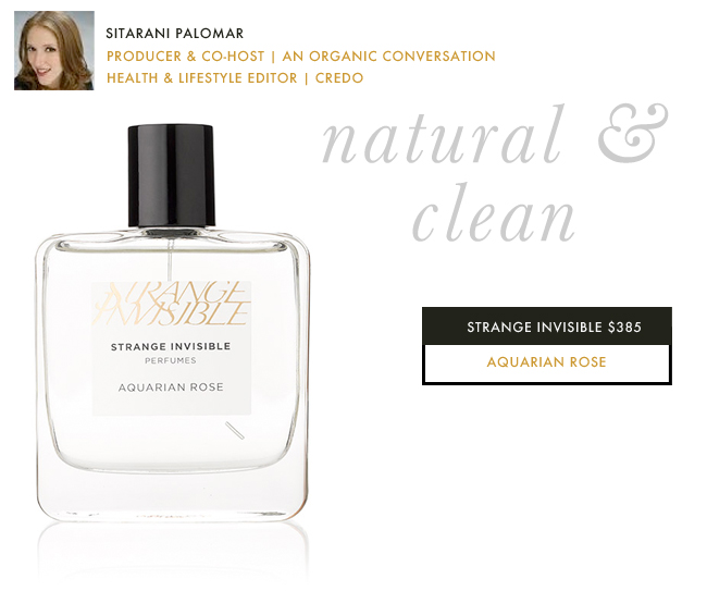 Well-groomed-gift-guide-for-her-sita-organic-conversation-strange-invisible-credobeauty