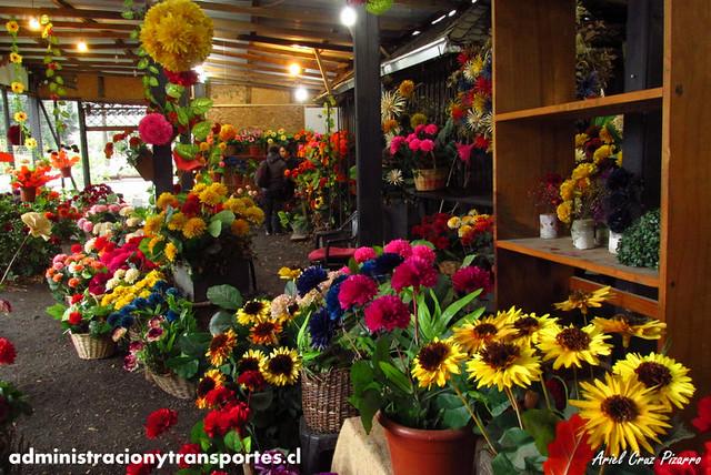 Flores de madera - Pucón