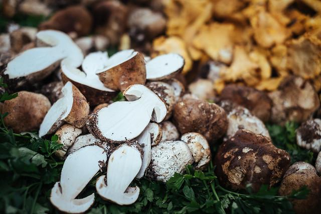 Naar de markt in de Luberon: eekhoorntjesbrood op de markt van Lourmarin