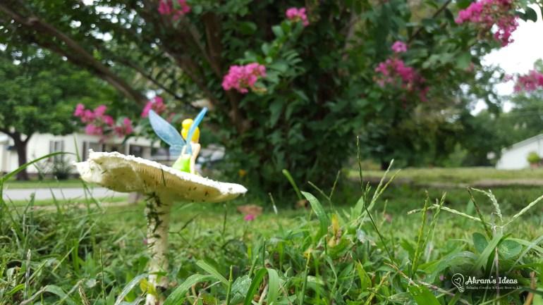 Mushroom Fairy 007