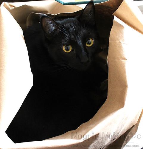 Olive in paper bag