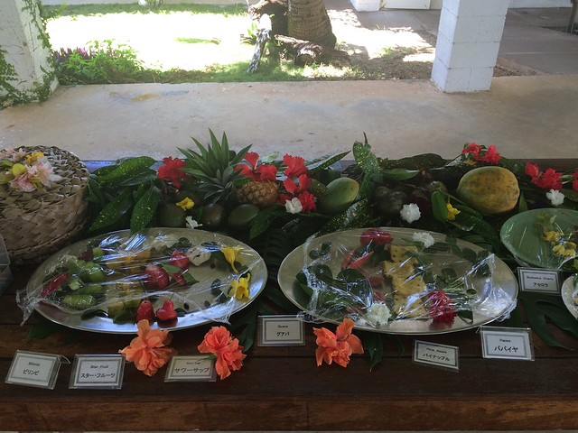Picture from Hamamoto Tropical Fruit World