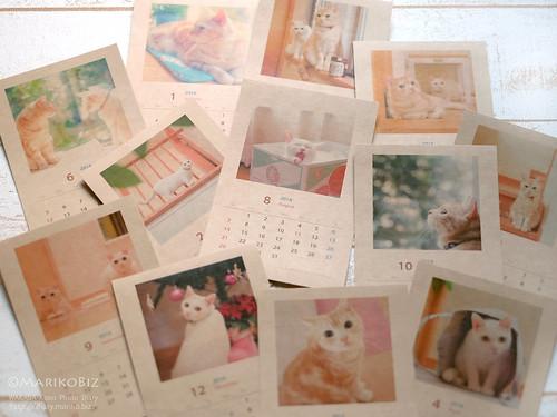 2016カレンダー にゃんこ 20151208-DSCF8837