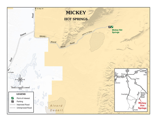 Mickey Hot Springs