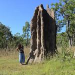 02 Viajefilos en Australia, Kakadu NP 129