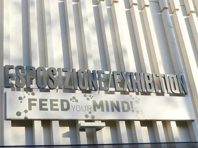 feed-your-mind