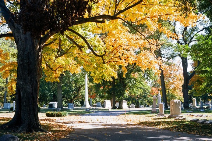 Autumn at Crown Hill