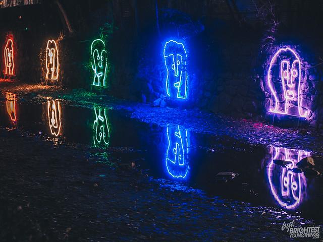 120116_Georgetown Glow_009_F