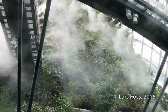 Inside Cloud Forest in Gardens by the Bay