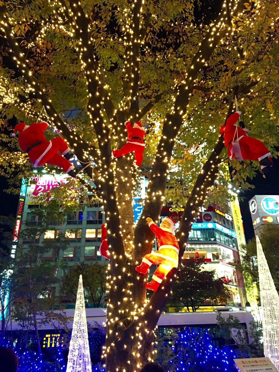 Hachiko and Christmas illumination