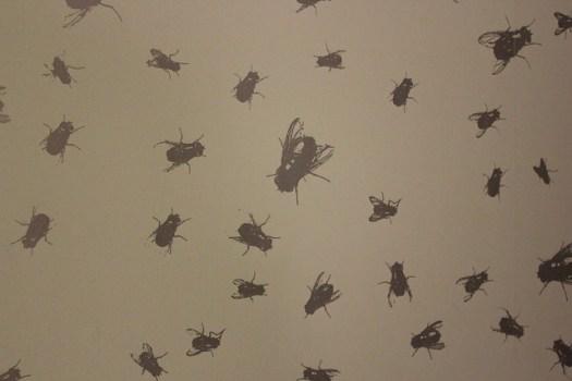 Rob Wynne, Flypaper (hand-printed wallpaper)