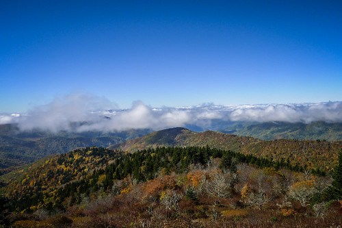 Blue Ridge Parkway in Autumn-23