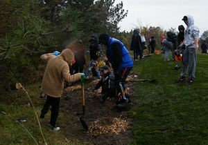 2015 13 Manitou Community Picnic Native Shrub planters_300
