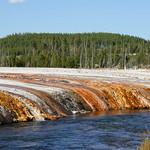 53- Yellowstone