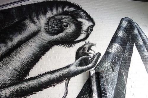 04 Road to Te Anau-07 Dunedin Street Art