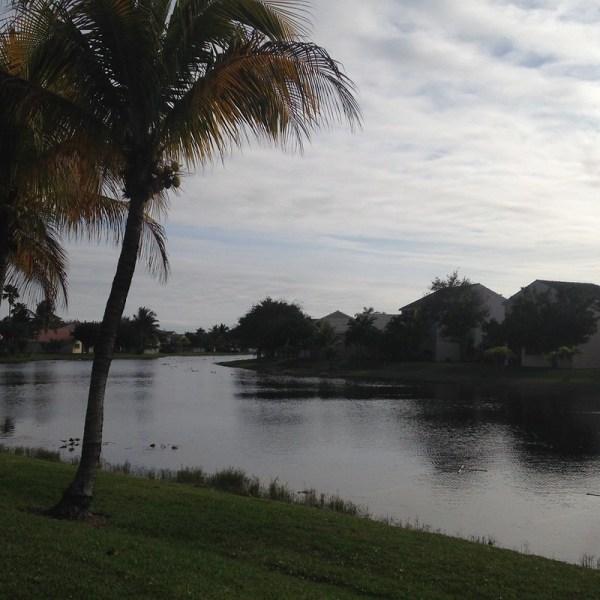 Weston FL