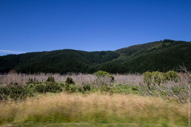 NZ_day10-11