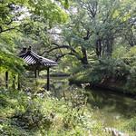 18 Corea del Sur, Changdeokgung Palace   15