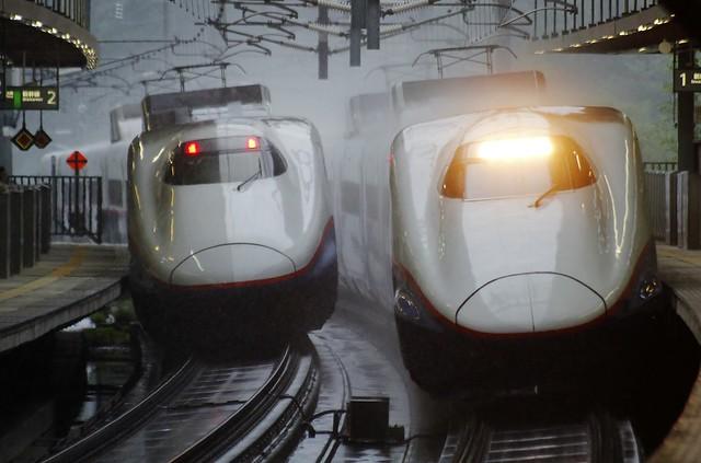 Series E2 (N7,N21) at Annaka-Haruna Sta.