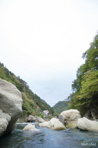 Shiobara2016