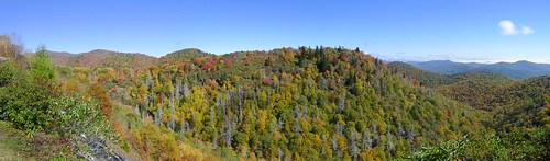 Blue Ridge Parkway in Autumn-77