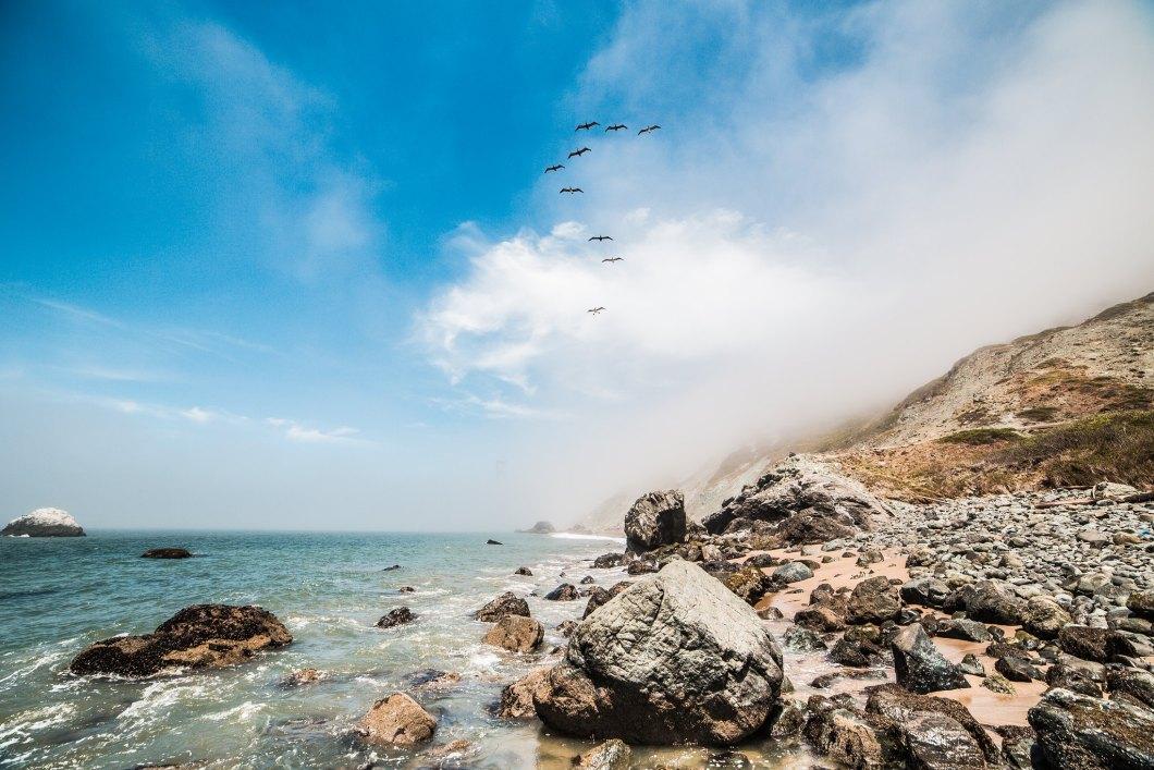 Imagen gratis de unos pájaros volando por encima del mar