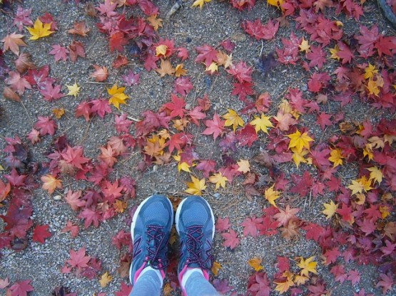 Tennis shoes and Autumn Leaves