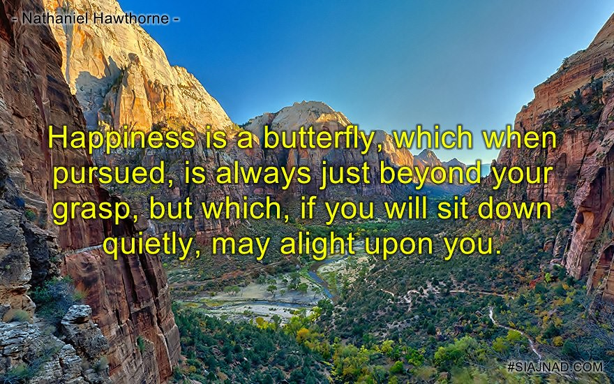 Happiness is a butterfly which when pursued is always just beyond your grasp