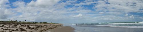 Avalon Beach-002