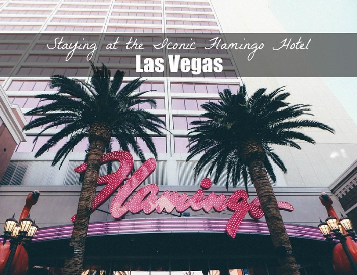 Staying at the Iconic Flamingo Hotel (Las Vegas) | Perogy and Panda